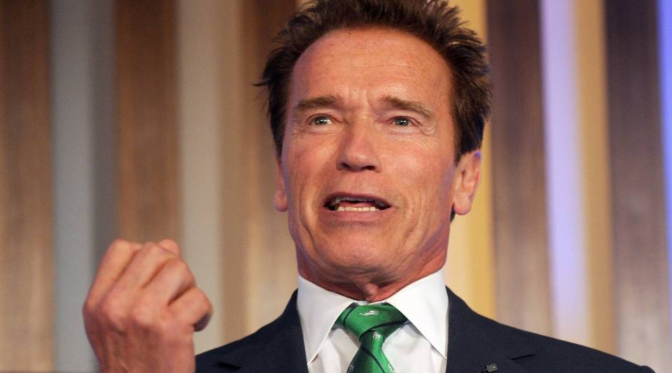 Former governor of California Arnold Schwarzenegger speaks during the Delhi Sustainable Development Summit in New Delhi on Feb. 2, 2012. The actor has donated to create a new think tank for state and global policy at USC.
