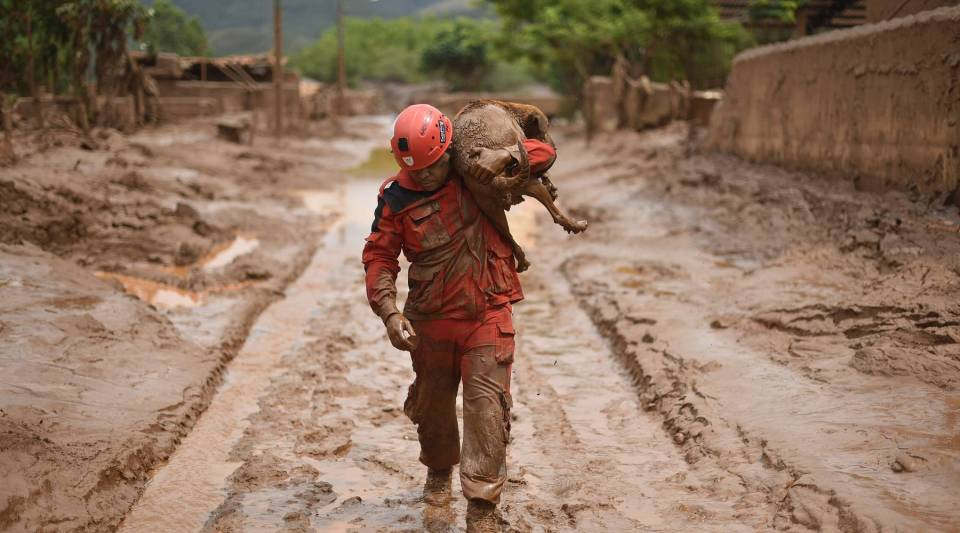 A fireman rescues in Paracatu de Baixo, Minas Gerais, Brazil on November 9, 2015 a dog that was trapped in the mud that swept through the Village of Bento Rodrigues. The tragedy occurred when waste reservoirs at the Samarco iron ore mine burst open, unleashing a sea of muck that flattened the nearby village.