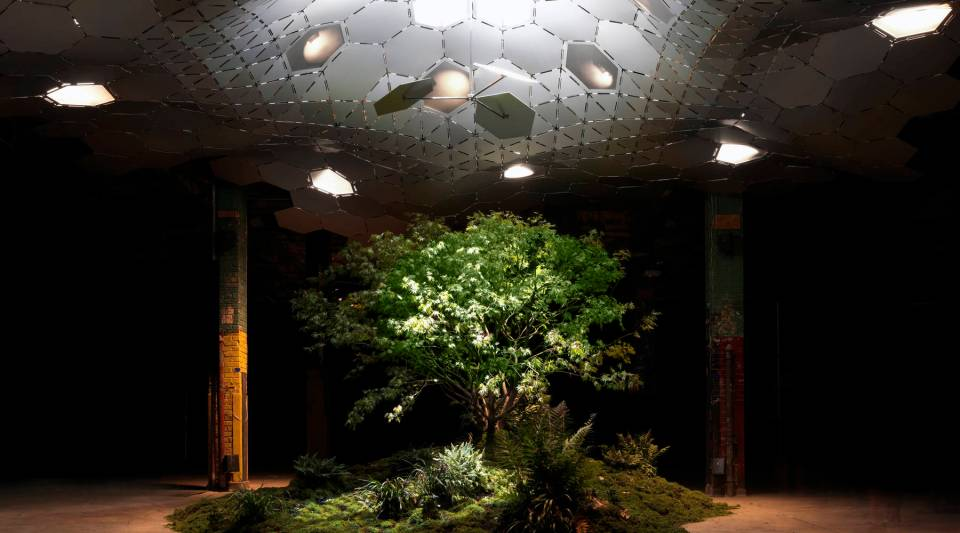 The Lowline test facility in the Lower East Side of New York City.