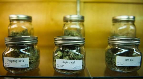 Продажа марихуаны бизнес марихуана в исландии