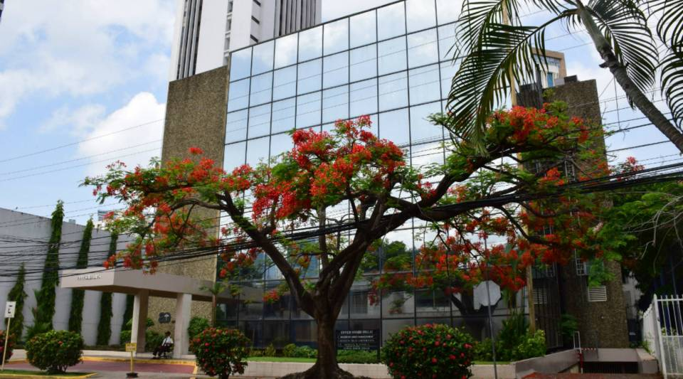 A guard sits outside the headquarters of Mossack Fonseca in Panama City.