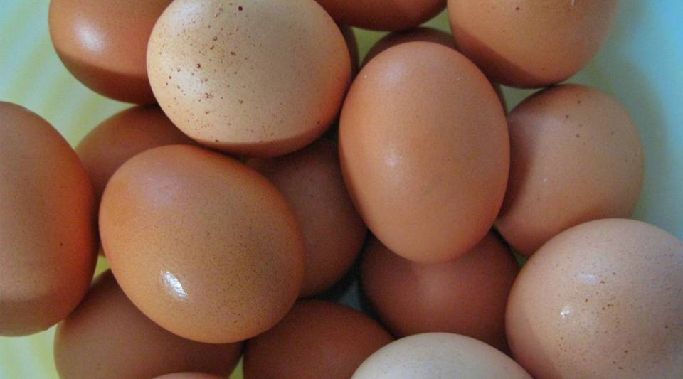 Multiple big names in the food industry are starting to make cage-free eggs.