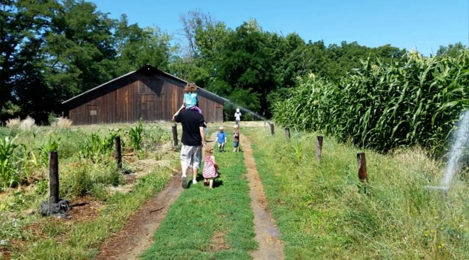 A walk to the barn at Hanley Historic Farm.