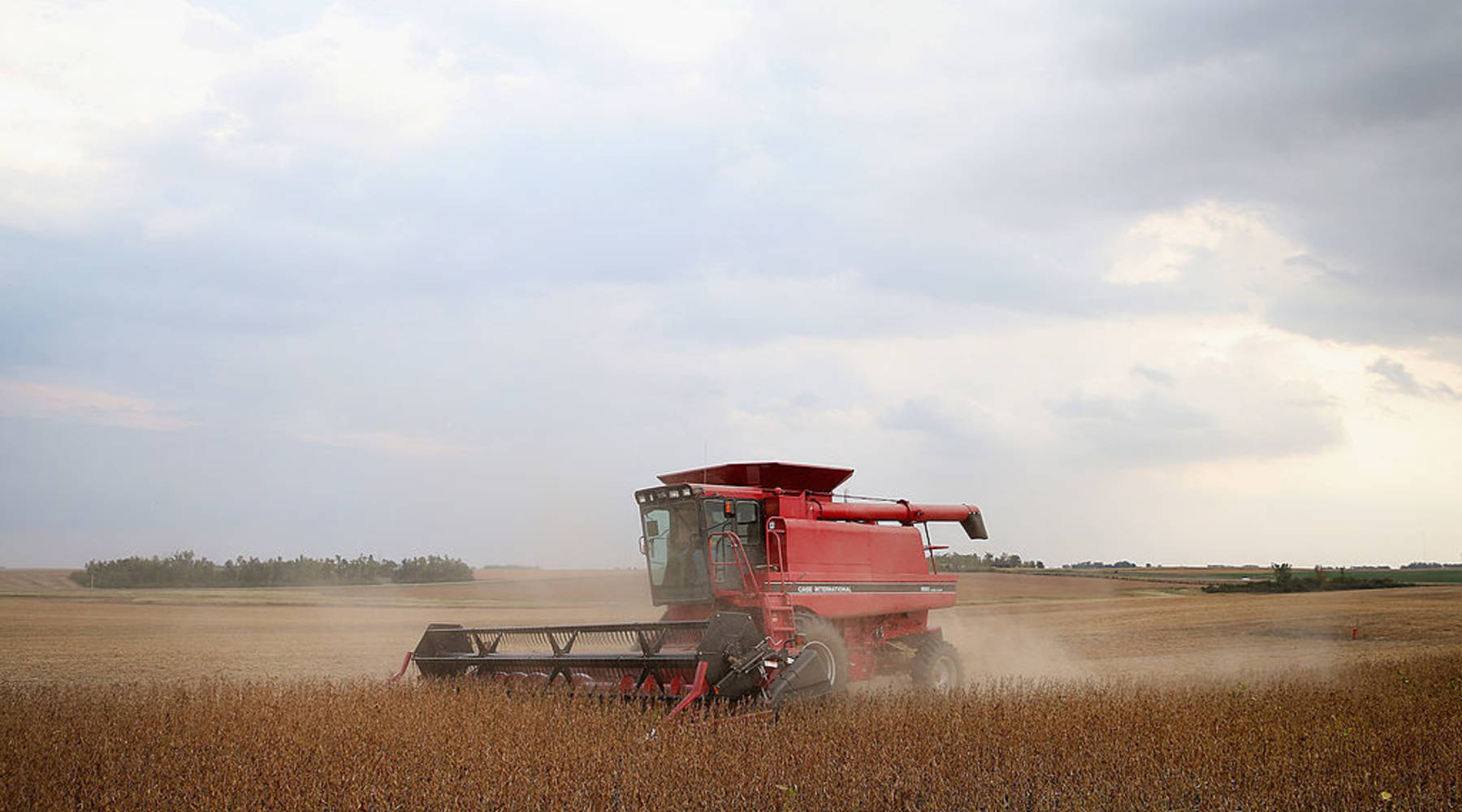 Low crop prices drag farm towns down with them - Marketplace