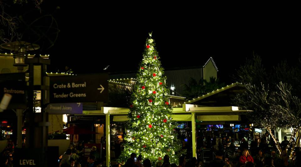 General atmosphere shot at the Holiday Tree Lighting at The Village at Westfield Topanga on November 19, 2016 in Woodland Hills, California.