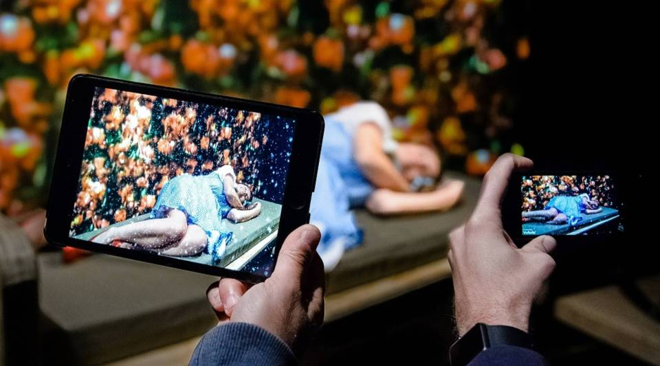 Augmented reality allows audience members to see poppies growing around the stage.