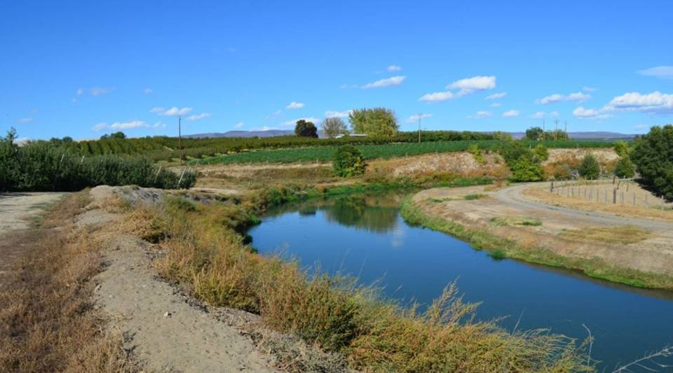 In a good year, Brad Carpenter's Yakima Valley irrigation canals are full of water.