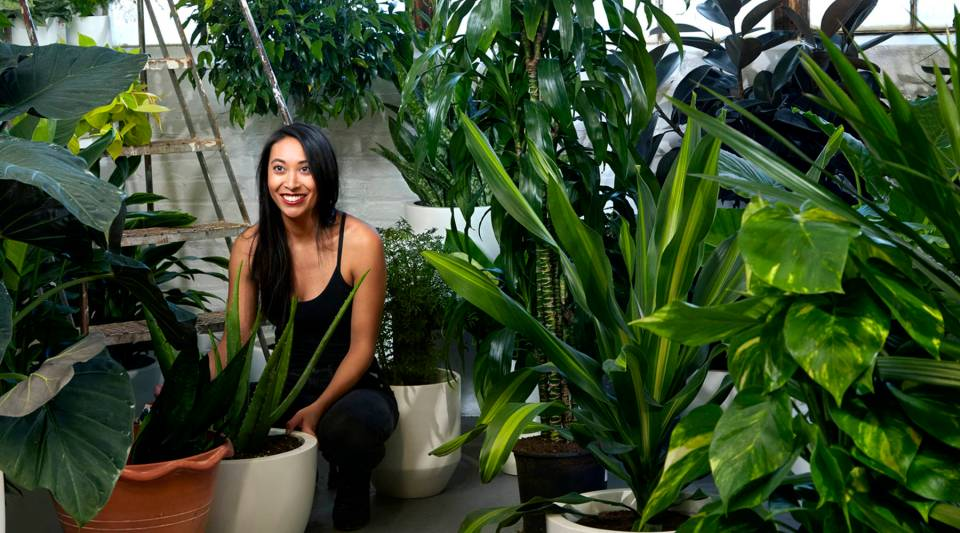 The Sill founder and CEO Eliza Blank pots houseplants.