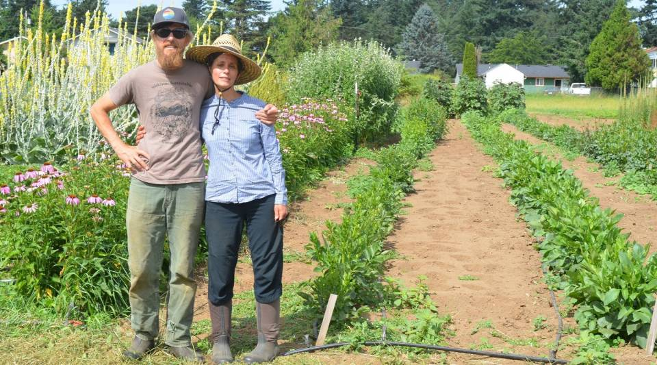 Brian Campbell and Crystine Goldberg are breeding seeds for the Open Source Seed Initiative on their farm near Bellingham, Washington.