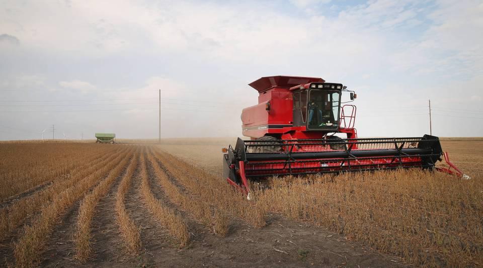Soybeans are harvested near Worthington, Minnesota.