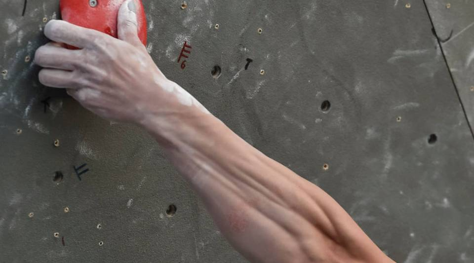 Would you be more likely to go rock-climbing if your company picked up part of the tab?