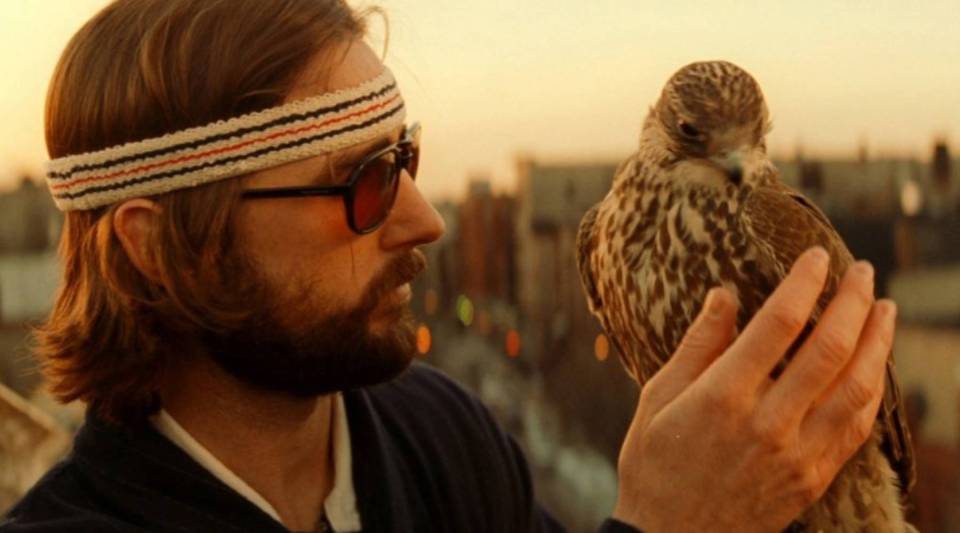 """A still from """"The Royal Tenenbaums,"""" which isn't about falconry, but features a falcon as a major plot point."""