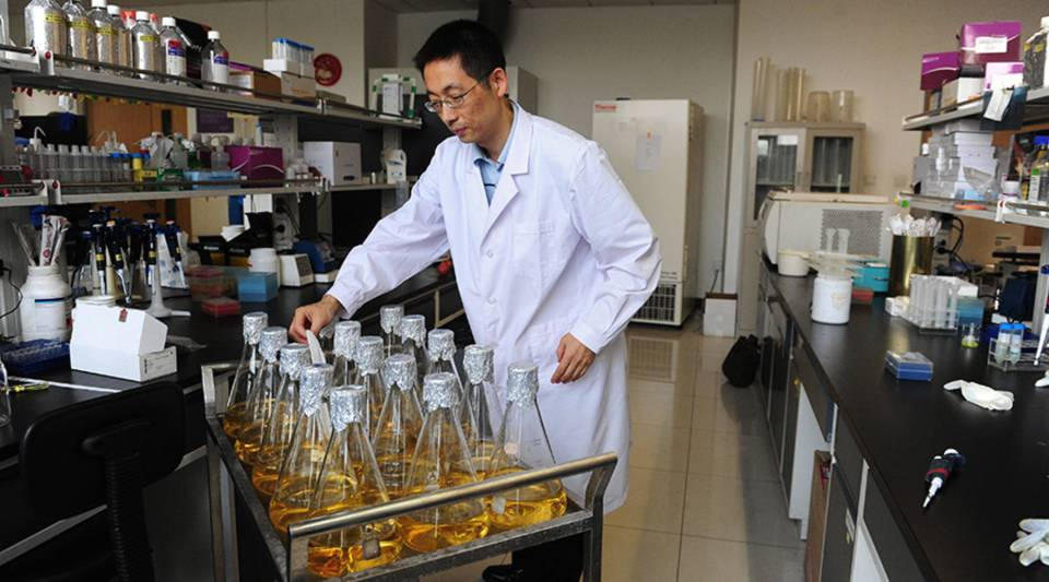 In a picture taken in 2010 Professor Shi Yigong, who walked away from a top research position in the United States to become the dean of the School of Life Sciences at Beijing's prestigious Tsinghua University in 2008, places a note among bottles of bacterial culture in a university lab in Beijing.