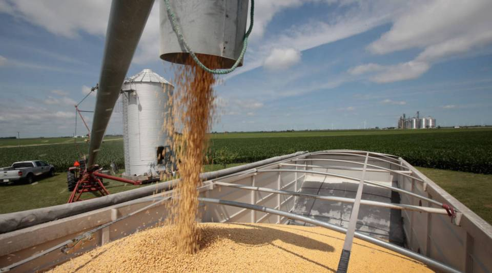 Soybeans loading onto a truck on their way to a grain elevator in Dwight, Illinois. U.S. soybean futures plunged when China announced retaliatory tariffs on them in June.