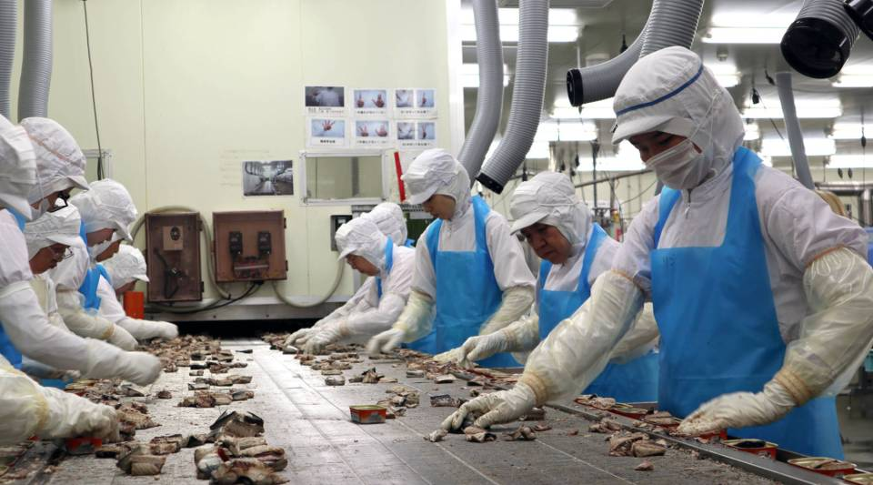"""Workers at the Tsuda Shoten fish plant in Kamaishi, Japan. About 10 percent of the workers are non-Japanese """"interns"""" who come through a special government program."""
