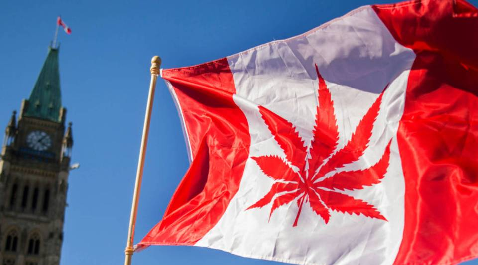 A woman waves a flag with a marijuana leaf on it next to a group gathered to celebrate National Marijuana Day on Parliament Hill in Ottawa, Canada.