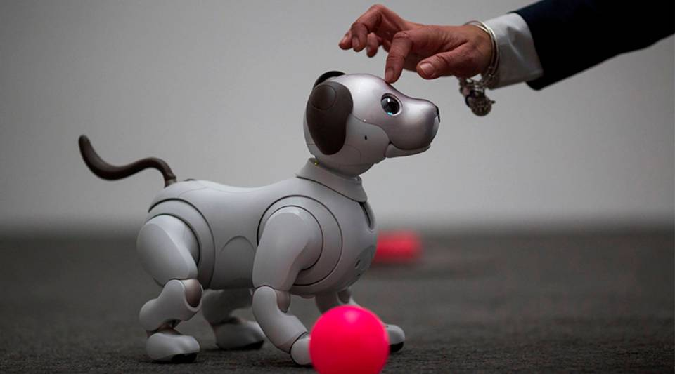 Sony's artificial intelligence-capable Aibo robot is on display at a 2018 CES press event in Las Vegas.