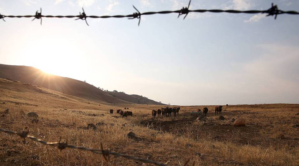 Grazing fees on public lands were dropped to the lowest amount allowed under federal law.