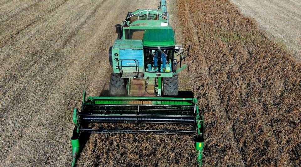 Soybeans are harvested in 2018.