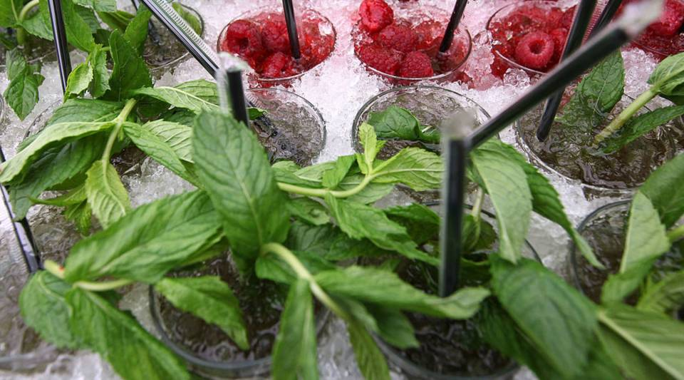 A detail of mint juleps packed in pack ice during the Kentucky Derby at Churchill Downs.