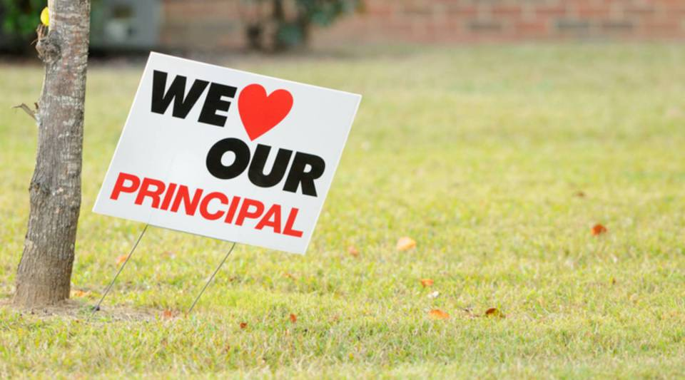 The report is based on a program of investment in more than 1,100 principals.