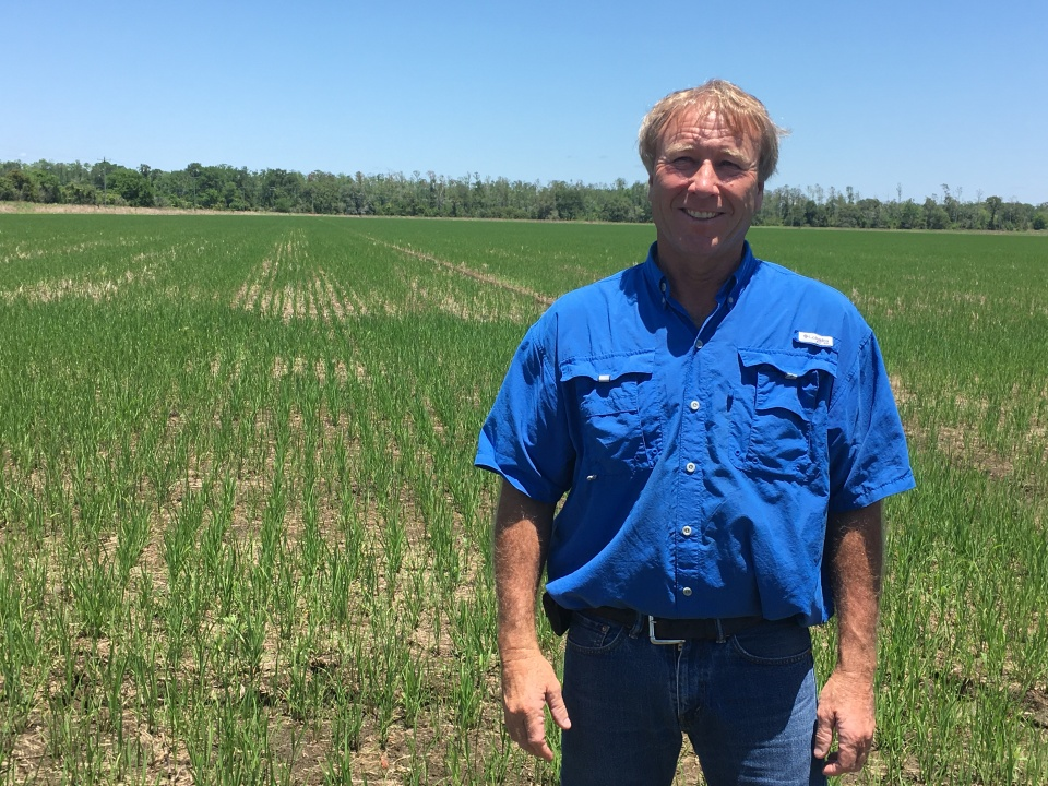 Jeff Durand on his rice farm in St. Martinville, Louisiana.