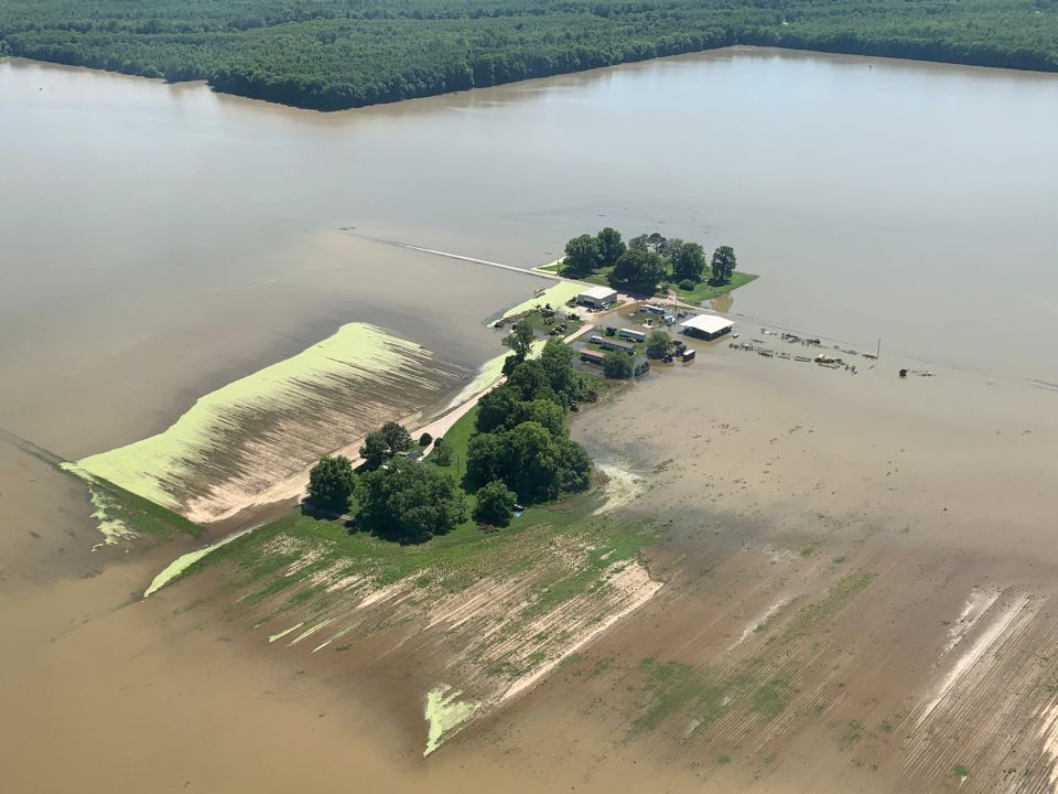 Flood waters covering farmland in the Mississippi Delta means thousands of acres of crops