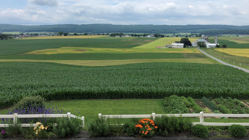 The view from Paul Stoltzfus's family farm.