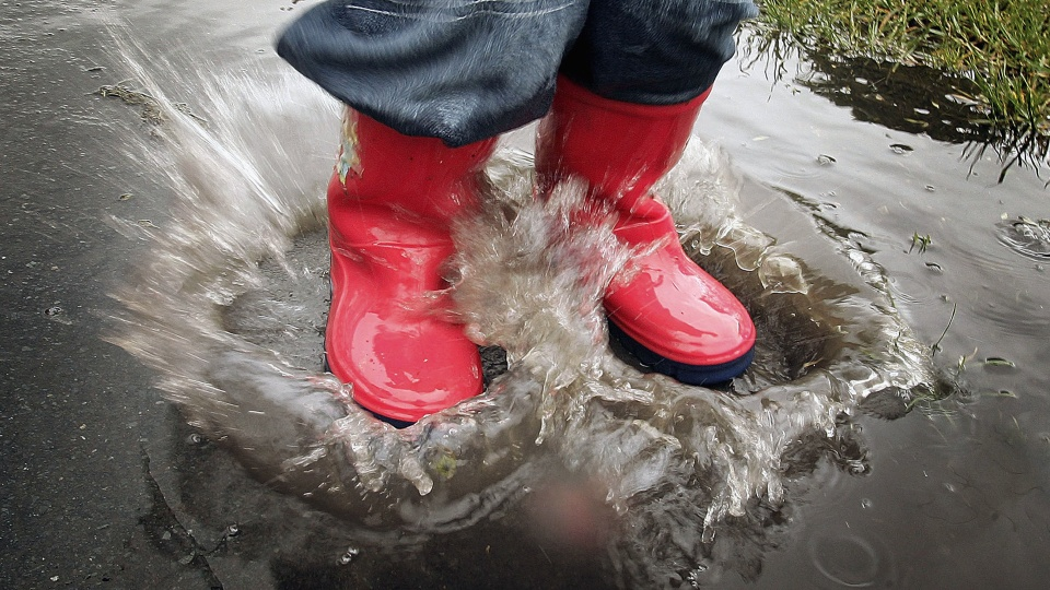 """Teflon"" chemicals can be found in waterproof shoes, rain jackets and cookware."