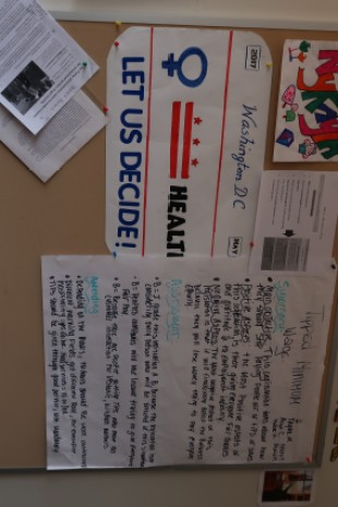 Civics-related posters, including one focused on the fight for D.C. statehood, on the wall of Oumar Diallo's classroom.