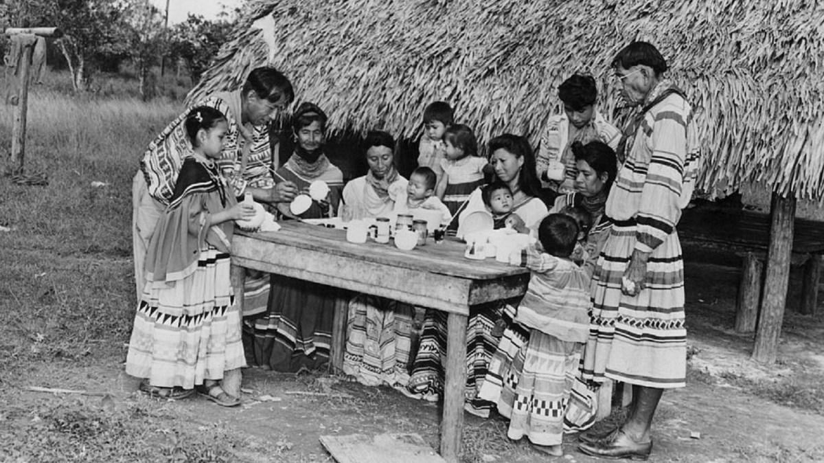 University of Miami starts Native American studies program - Marketplace
