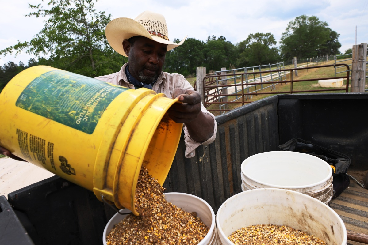 Agriculture Department brings debt relief to Black and minority farmers - Marketplace