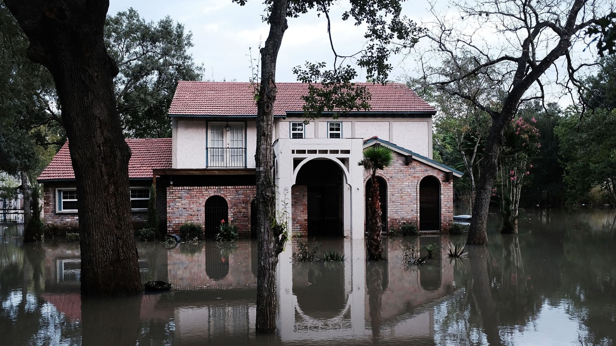 Homeowners are dropping flood insurance, study shows - Marketplace